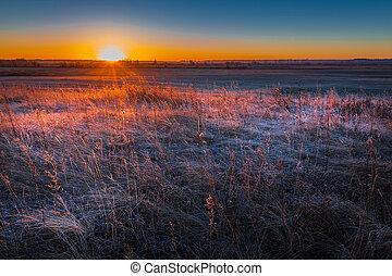 Frosty autumn morning. Western Siberia - Sunrise over frost-...