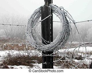 Frosty barbwire