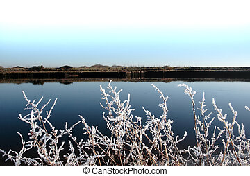 frosty branches in snow against cold blue sky and river