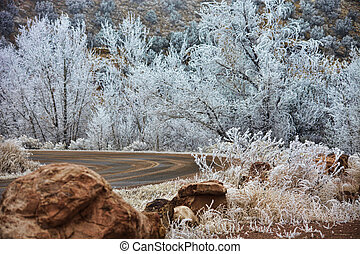 Frosty Curved Road