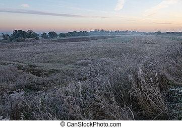 Frosty fall morning