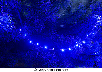 Frosty pine needles in blue evening christmas light