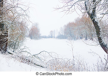 Frosty winter morning.