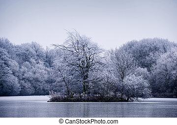 Frosty winter tree landscape on a lake