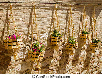 Frower pots hanging on the wall