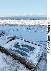 frozen animal feeder in winter