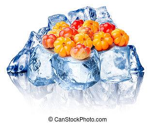 Frozen cloudberries isolated