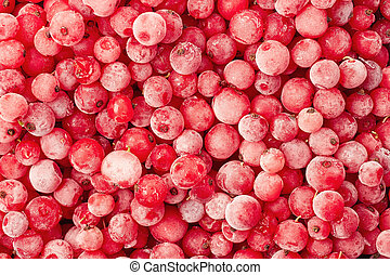 Frozen currant background