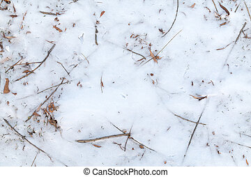 Frozen Foliage in the Snow Background