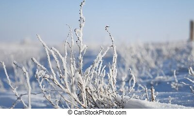 frozen grass next to the highway route travel winter...