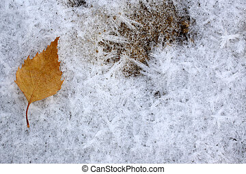 Frozen ice crystals with fallen dry autumn leaf on the ground, for backgrounds or textures