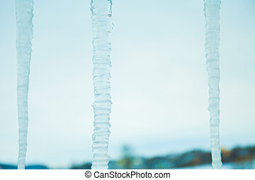 frozen icicle out door. nature background. winter weather
