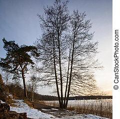 Frozen lake in Gothenburg Sweden 2018