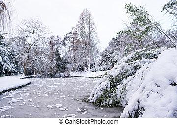 Frozen Lake in Grove Park, Harborne - View of frozen lake in...