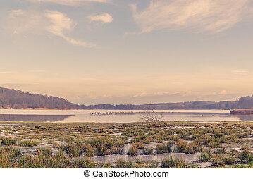 Frozen lake landscape in the morning