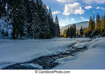 Frozen mountain river in spruce forest