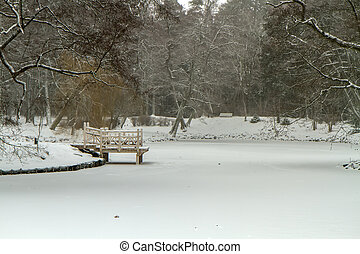 Frozen pond in winter with bridge