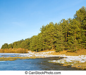 Frozen river and trees in spring