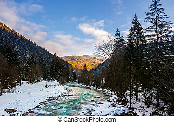 frozen river in forest - frozen river among conifer forest...