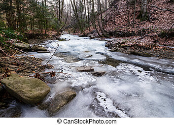 frozen river in forest - frozen river among the forest in...