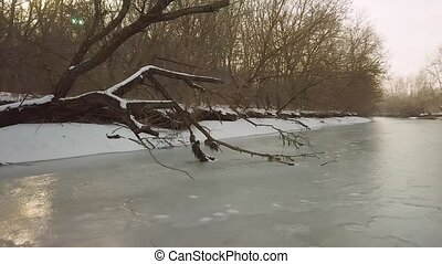 Frozen river with fallen tree