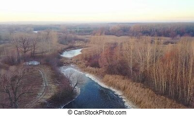 Frozen river without snow at fall, naked tree aerial video
