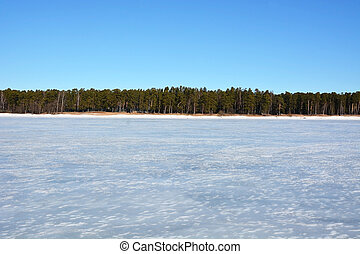 Frozen sea. View to the shore with trees