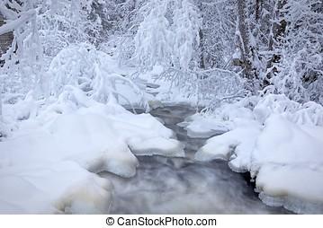 Frozen stream in forest - Water in frozen stream. Snowy...