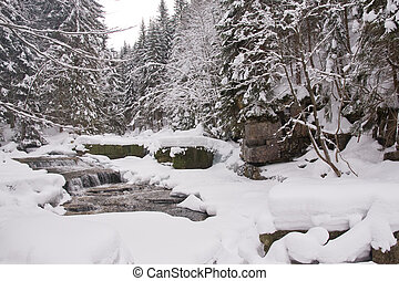 frozen stream - mountainous stream covered with snow