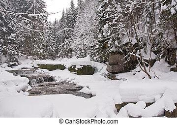 frozen stream - mountainous stream covered with snow