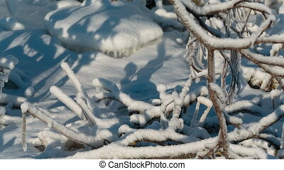 Frozen tree branches panning close-up