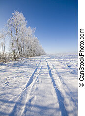 Frozen trees and snowy land road at winter, deep blue sky...