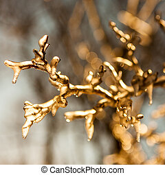 frozen twig background - GOLD version