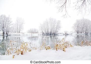 Frozen winter landscape. Nature composition.