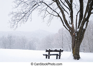 Frozen winter landscape with snow-covered bench