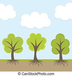 fruehjahr, bäume, in, natur
