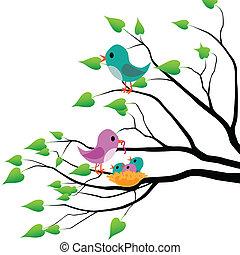 fruehjahr, vögel
