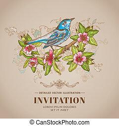 fruehjahr, vogel, abbildung, -vintage, karte, -, hand-drawn, in, vektor