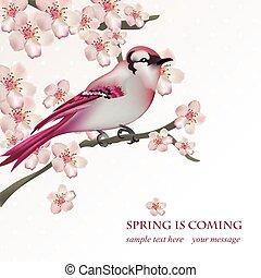 fruehjahr, vogel, auf, blüte, kirschbaum, zweig, vektor, illustration., schöne , postkarte, für, muttertag, geburstag, anniversary., pastell, rosa, colors., vektor, abbildung