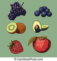 fruit and berries collection vector