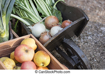 fruit and vegetable in the wheelbarrow