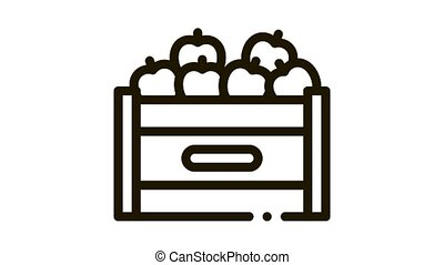 fruit box container Icon Animation