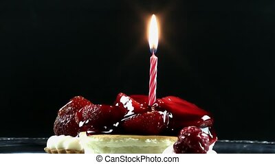 Fruit Cake and Birthday Candle