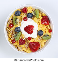 Fruit cereals with yogurt in a bowl from above