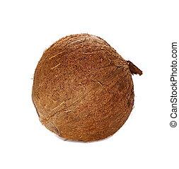 fruit coconut isolated on white