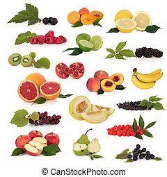 Fruit Collection - Large fruit collection high in ...