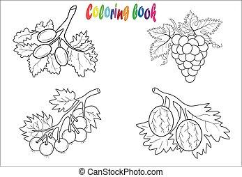 Fruit coloring book