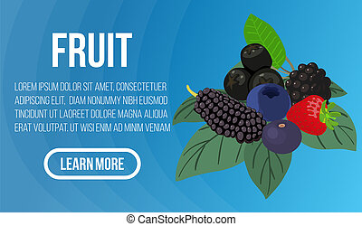 Fruit concept banner, isometric style