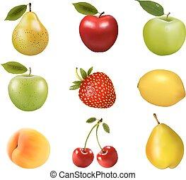 fruit., differente, vector., gruppo, grande