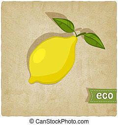 fruit eco old background - vector illustration. eps 10